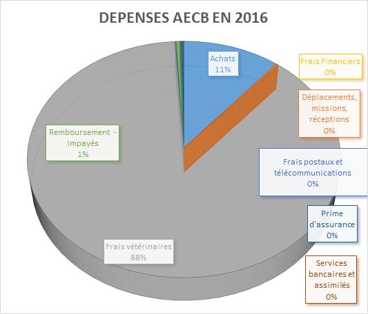 depense-aecb-en-2016
